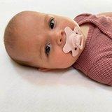 Fopspeen Difrax 12-18 maanden Natural Pure | Blossom roze