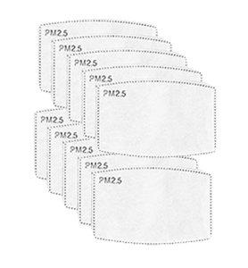 beschermende PM2.5-filters